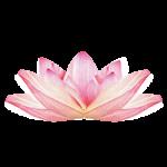 Kundalini-Yoga-lotus