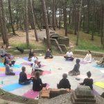Yoga Zomer weekend Terschelling vrijdag 23 t/m zondag 25 juli 2021